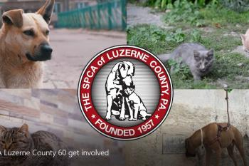 Who is the SPCA of Luzerne Coutny
